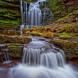 Scaleber Force by Steve BB - Nature Up Close Water ( silk, stream, yorkshire, green, malham, waterfall, scaleber force, slow shutter, river, malhamdale )