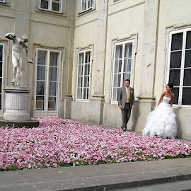 Bridal Photo Session in Łazienki Park   by Dennis  Ng - Wedding Bride & Groom (  )