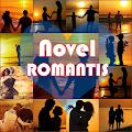App Novel Romantis APK for Kindle