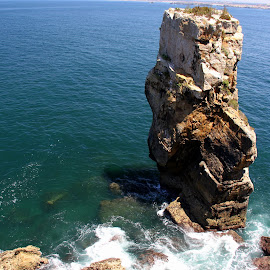 The rock by Gil Reis - Nature Up Close Rock & Stone ( life, nature, ocean, travel, portugal, stones, rocks )