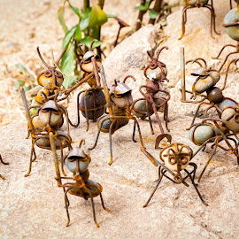 Ant Army by Dave Lipchen - Artistic Objects Other Objects ( ant army )