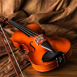 Life Partners by Rakesh Syal - Artistic Objects Musical Instruments (  )