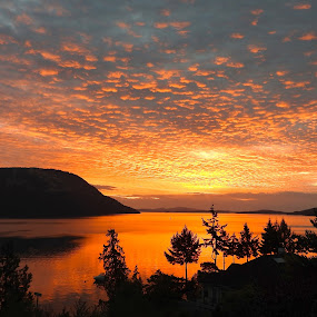 Sunrise over Saltspring Island by Campbell McCubbin - Landscapes Sunsets & Sunrises ( clouds, water, trees, sunrise, island,  )