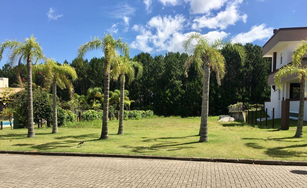 Terreno, Campeche, Florianópolis (TE0042) - Foto 17