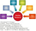 Best Market Research Company in Delhi