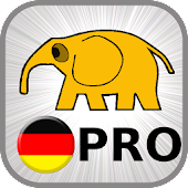 Learn German Basics PRO