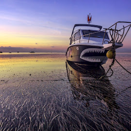 The Shark Boat. by Ade Irgha - Transportation Boats
