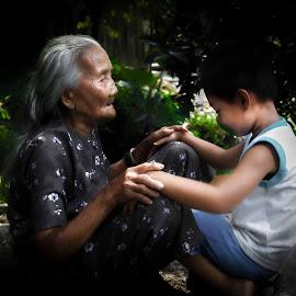 Dear garndmother. I'm very sorry by Sơn Hải - People Family ( vietnamese, vietnam, asian, kid, child, sit, hand, sitting, asia, old woman, elderly, boy, garden )