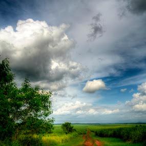 Pathway To Wonderland by Nadzli Azlan - Landscapes Prairies, Meadows & Fields