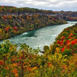 Niagara Gorge by Debra Branigan - Landscapes Travel ( gorge, travel, rivers, landscapes, photography )