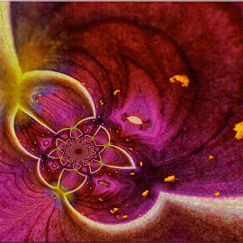 Textured detail by Kittie Groenewald - Abstract Patterns ( patterns, magenta, abstract art, lines )