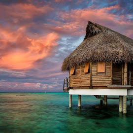 Tahitian colours by Rebecca Ramaley - Buildings & Architecture Other Exteriors ( pearl beach, tahiti, sunset, tikehau, rainbow, bungalow, overwater )