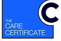 Online care certificate training package -