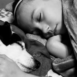 Both Sleeping by Lauren DeJarnatt Yoder - Animals - Dogs Puppies ( sleeping, dog, kid,  )
