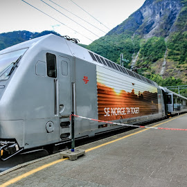 Norwegian Trains by Mandy Hedley - Transportation Trains ( modern, transport, train, flam, norway )