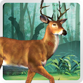 Game New World Wild Animal Hunting apk for kindle fire