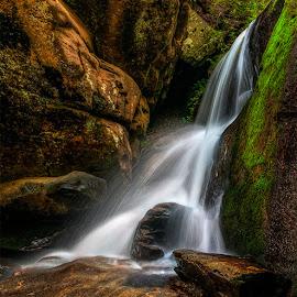 Little Brady  by Charles Hardin - Nature Up Close Water ( charles hardin, waterfalls, water up close., little bradley falls, wnc )