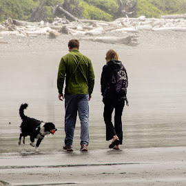 Walking the Dog by Richard Michael Lingo - People Couples ( beach, landscape, dog, people, couples )