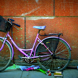 Cycled parked in the neighbourhood by Samrat Sarkar - City,  Street & Park  Neighborhoods ( cycle, pink, parked, alone, wall )