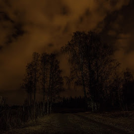 Tried night photography 😊åtur? by Fredrik Sindsen - Landscapes Forests ( night, longexposure, canon, 5dmk3, stacked, norway, wierdcolorsinthesky, trees, road, path, clouds, dark, winter, kveld, utp, nattfoto, skyer, eidsvoll, hvorerbikkja, fjsphotography, amazing_longexpo )