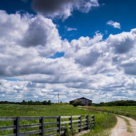 by Matt McEuen - Landscapes Prairies, Meadows & Fields