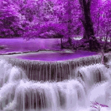 Nature Purple Fall LWP
