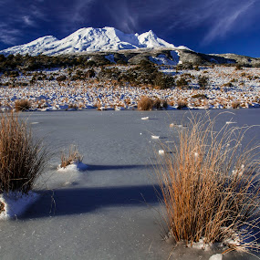 Mount Ruapehu in winter. by Joseph Callaghan - Landscapes Mountains & Hills ( winter, mountain, cold, fresh, chilly, frozen, new zealand )