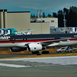 TRUMP by Lavonne Ripley - Transportation Airplanes