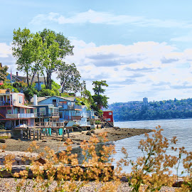 Beach homes on Puget Sound by Christopher Barker - Buildings & Architecture Homes ( beach homes, distant city, puget sound, beach, homes )