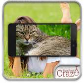 Cat face scanner APK for Nokia