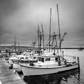 Langosta II by Joe Larson - Transportation Boats