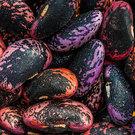 Beans by Nigel Bishton - Nature Up Close Gardens & Produce ( macro, purple, seeds, garden, produce )