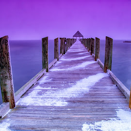 Snowing at the Pier by Carol Ward - Buildings & Architecture Bridges & Suspended Structures ( reflection, ocean city, waterscape, northside park, sunset, pier, maryland, landscape, dusk, dock )