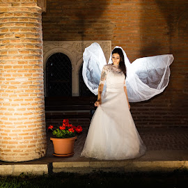 Bride by Arici Ciprian Claudiu - Wedding Bride ( backlit, wedding photography, backlighting, bride, portrait )