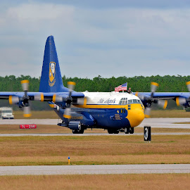 Fat Albert by Jarrod Unruh - Transportation Airplanes ( plane, airplane, outdoors, aircraft, navy, usa, planes, airshow, military )