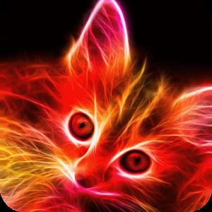 Яркий котёнок живые обои