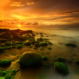 The Mossy Rocks by Luther Mallipu - Landscapes Beaches ( sand, sky, makassar, sunset, twilight, moss, stone, beach, landscape, rocks )