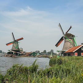 Wind mills by Natalia Dobrescu - Buildings & Architecture Other Exteriors ( sky, discover, green, explore, nature, wind mill, netherlands, water, mill, adventure, wooden, travel, europe )