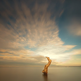 Standing still by Ledon Jasper Samoranos - Landscapes Waterscapes