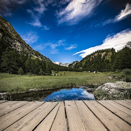 Poin of view by Alessio Coluccio - Landscapes Mountains & Hills ( clouds, landscale, reflection, sky, mountain, nature, tree, wood, devero )