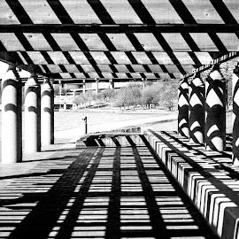 Shadow Patterns by Nick Neben - Abstract Patterns ( omaha, patterns, park, nikon, nebraska, shadows )