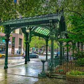 Pioneer Square by Heather Allen - City,  Street & Park  City Parks