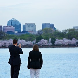 stroll before work by Mike Mulligan - City,  Street & Park  City Parks ( work, dc, couple, city, cherry blossoms )