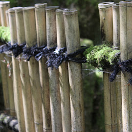 Fence by Michael Watts - City,  Street & Park  City Parks