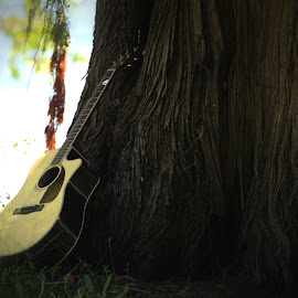 Resting by Lena Arkell - Artistic Objects Musical Instruments ( tree, park, acoustic, summer, guitar )