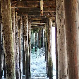 Under Seacliff Pier by Patty Hartigan - Landscapes Beaches ( sand, splash, underside, sea, pier, ocean, seascape, ocean view, underneath )