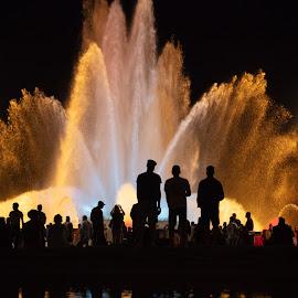 Magic Fountain  by VAM Photography - City,  Street & Park  Fountains ( magic fountain, fountain, barcelona, night, park, lights )
