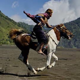 Bromo Horse Rider by Ucok Udeen - People Street & Candids ( #people #animal )