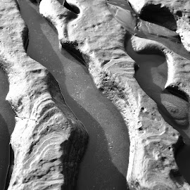 Wave carve by Willem Pretorius - Nature Up Close Rock & Stone ( carved, water, erosion, black and white, shoreline )
