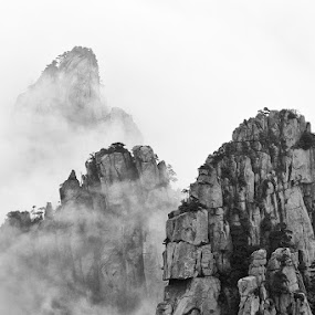 Sea of Clouds by Rich Voninski - Landscapes Mountains & Hills ( sea of clouds, pwcbwlandscapes, huangshan, china )
